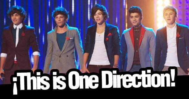 Directioners: One Direction: Un Grupo, Un Sueño y Cinco Amigos