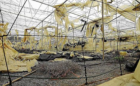 Un invernadero abandonado. | Jesús G. Hinchado