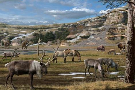 Reconstrucción de la fauna del Pleistoceno en Eurasia, con renos, tarpanes, bisontes, mamuts y bueyes almizcleros. | Mauricio Antón