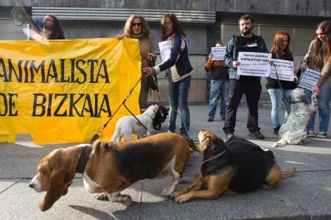 Dueños de perros de más de 8 kilos protestan frente al metro. | Mitxi