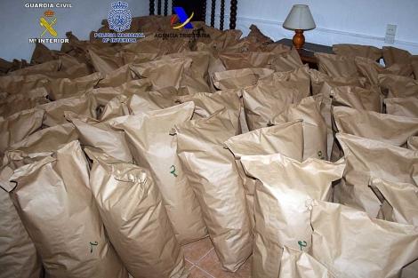 decenas de sacos con la marihuana intervenida durante la operación. | El Mundo