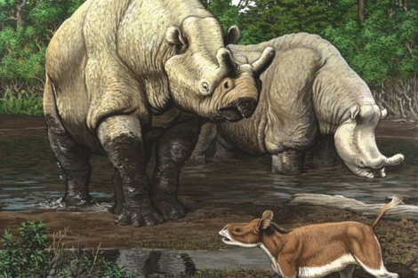 Recreación de una escena del Eoceno en Norteamérica. | Carl Buell | PNAS