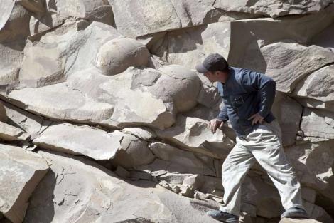 Los huevos de dinosaurios encontrados en Chechnyam, Rusia. |Reuters