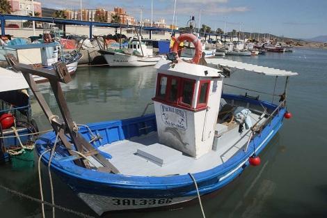 Algunas de las embarcaciones afectadas, amarradas a puerto en La Línea. | F. Ledesma