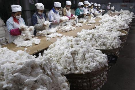 África puede competir con China en las manufacturas de algodón. | Reuters