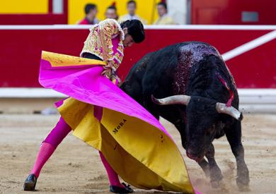 Toros | elmundo.es