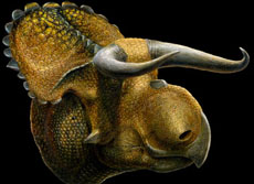 Ilustración del dinosaurio. | Lukas Panzarin