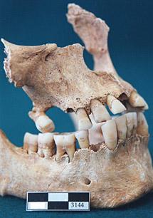 Escrito en los huesos 1302194308_extras_ladillos_1_0