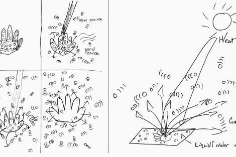 Dibujos de escolares representando la evaporación del sudor de la mano. | Foto: Science